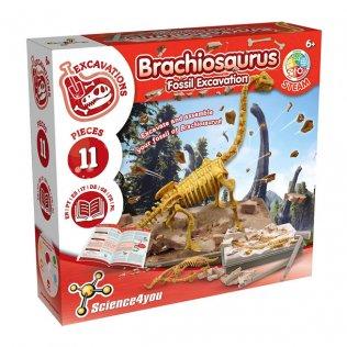 Juego Educativo Excavación Brachiosaurus Science4You