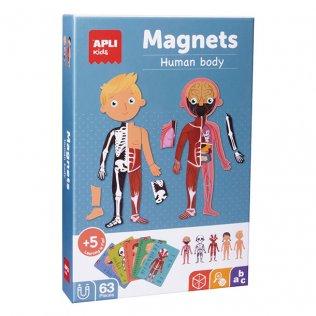 Juego Educativo Magnets Human Body Apli Kids