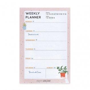 Planning Miquelrius Diario Nordic