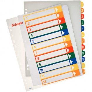 Esselte 12 separadores PP imprimibles A4+