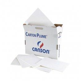 Cartón pluma 10mm 70x100 blanco